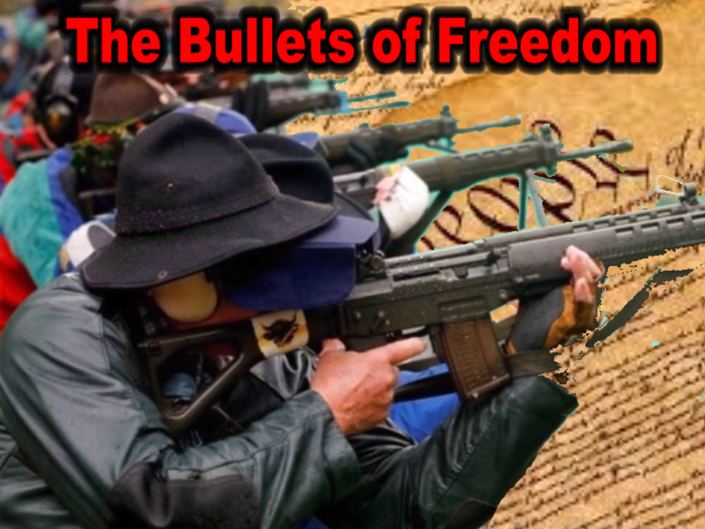 Bullets of Freedom=