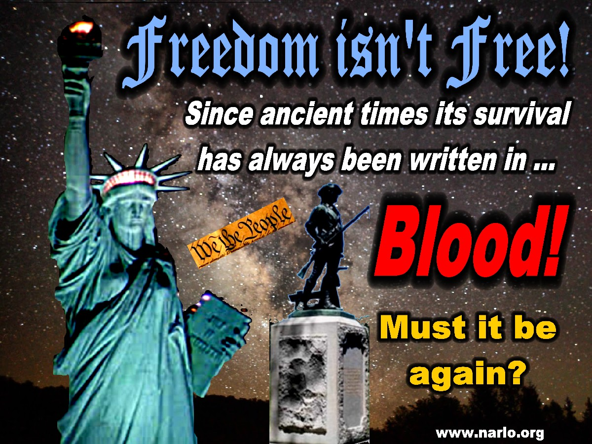 Freedom Isn't Free=
