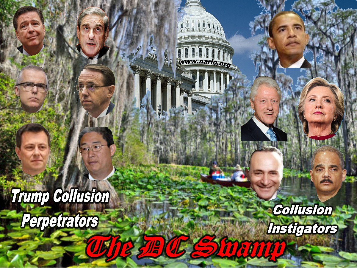 Washington DC Swamp=
