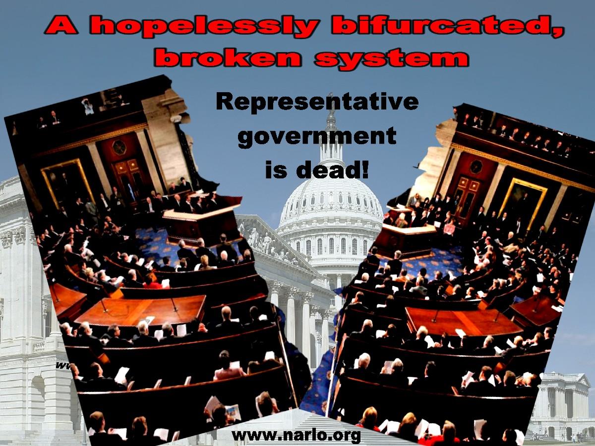 Representative Government=
