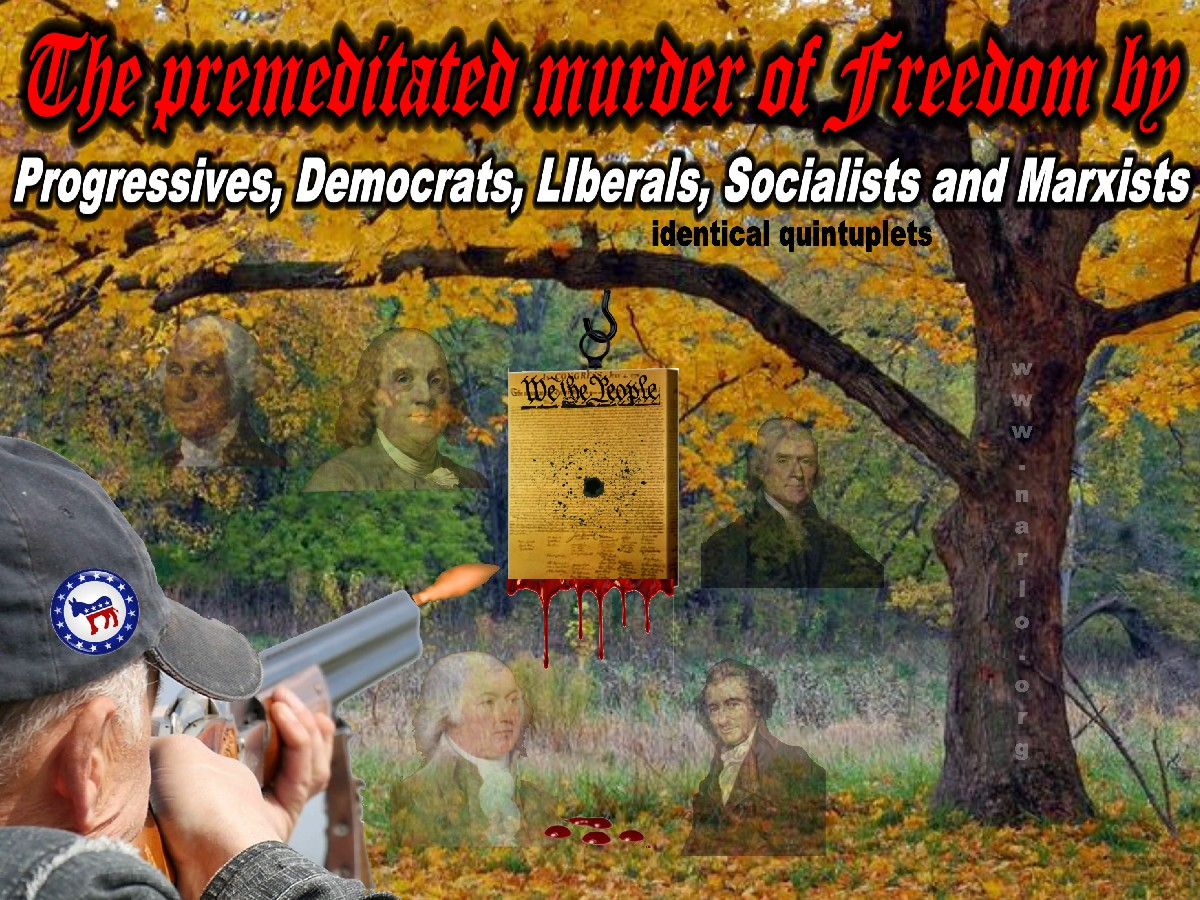 Shooting Freedom=