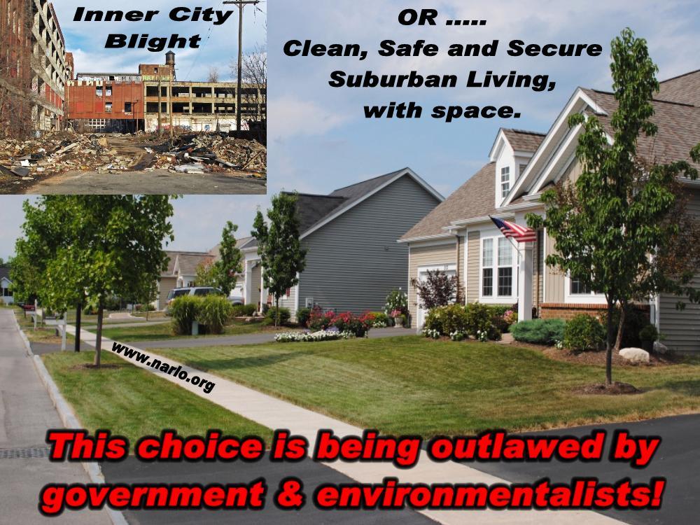 Suburban vs City Blight=